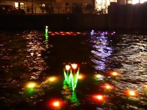 Light Festa 11